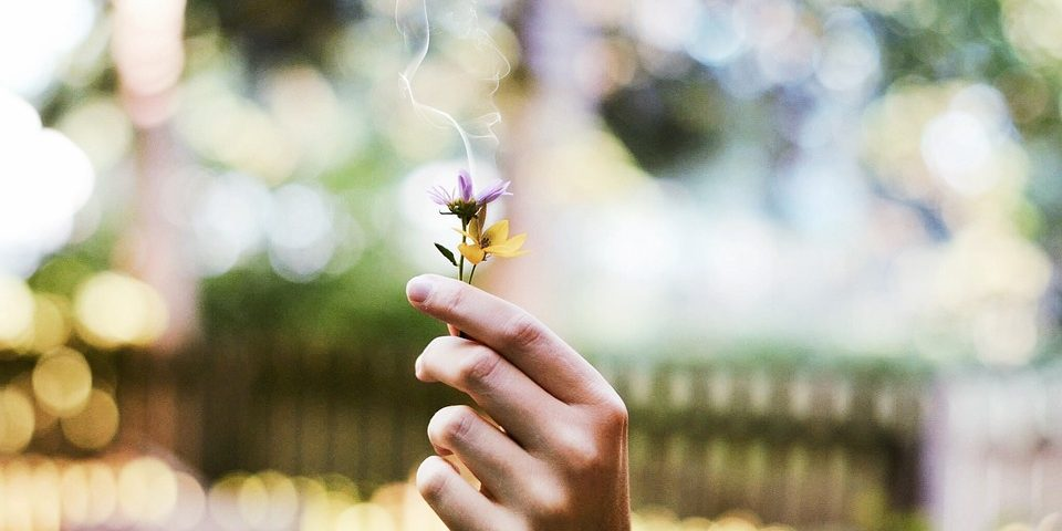 L'importanza del marketing olfattivo per i comportamenti dei clienti